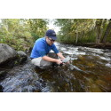 Feltforsøk med klorforbindelser mot lakseparasitten Gyrodactylus salaris i Lierelva