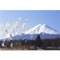 Nyhet vintern 2013-14: Japan med expresståg och shoguns borg