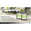Säkra dina minnen med SD-kort från Kingston