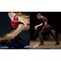 Flamencovecka på Dansens Hus
