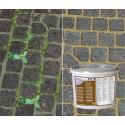 Slut med ukrudt og myrer i udendørs belægninger