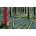 Mistra Digital Forest banar väg för robotik i skogen