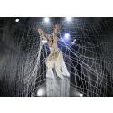 Cirkus Cirkörs Knitting Peace gästspelar i USA och utställningen förlängs på Armémuseum