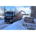 Økonomisk tømmertransport med MAN