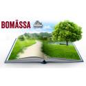 Grönt Boende - tema på stor Bomässa