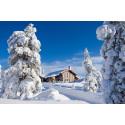 Ski-in ski-out er hot i sneen