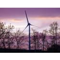 Grünes Geld - Säule der Energiewende