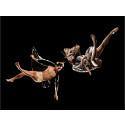 Våroffer och gaga-ikonen Ohad Naharin inleder danshösten