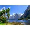 Kryssning Australien och Nya Zeeland