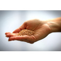 Förvandlar djurmat till människoföda