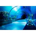 Oceantunnel
