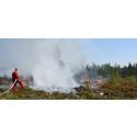 Skogsbrand - så här fungerar försäkringsskyddet