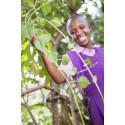 Pant blir träd - som ger pengar till barnens utbildning