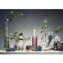 Scandinavian Functional Beverage NOA Relaxation Wins Global Award for Best Bottle Design