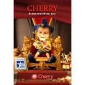 Cherry AB (publ) publicerar årsredovisningen för 2015