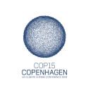 """AWEPAs chef om Afrikas """"uttåg"""" i Köpenhamn: De afrikanska länderna är rädda för att bli förlorare igen"""