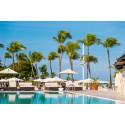 Res med Ving till Aruba och bo på ett av världens tio bästa hotell