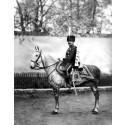Livgardets husarregemente 1912