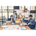 Ninjja Global Investigates Ways to Inspire Sales Representatives in the Field