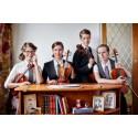 (PAUS): Vindla String Quartet och Nathan Larson spelar in dagen -  morgonkonsert med fri entré på Malmö Live