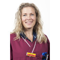 Anna Straube ny chef för bilddiagnostiska kliniken på Universitetsdjursjukhuset vid SLU