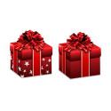 En annorlunda julklapp till den som lever ensam