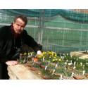Prestigefylld utmärkelse till Botaniskas intendent