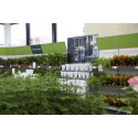 Blomsterlandet öppnar ny butik i Södertälje