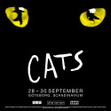 Succémusikalen Cats till Scandinavium nästa höst