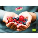 Ekologiska frukt- och bärpuréer med smak och färg i fokus!