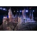 Stor Harry Potter-dag på Väven