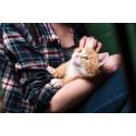 Djur minskar stress och gör oss lyckligare