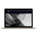 Grafikr udvikler hjemmeside for DFI-GEISLER