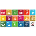 Danske teknologiledere er vilde med FN's bæredygtighedsmål