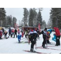 Bluewater Helps Keep Cross Country Skiing Athletes energized during Sweden's 90k Vasaloppet ski marathon