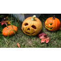 Så fixar du en mer hållbar Halloweenpumpa