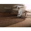 Benefits of Goodrich Carpet