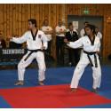 Nordisk mesterskap i taekwondo i Trondheim