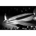 Canon kopplar greppet kring modefotografi och visualiserar Maria Nilsdotters jubileumskollektion med utskrifter på Canon Océ Arizona 350 XT