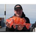 Nytt rekord på djuphavsfisken blåkäft – två gånger om