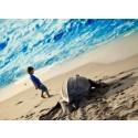 Viel mehr als feiner Sandstrand und türkisblaues Wasser