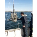 Östersjöns musslor och maskar producerar lika mycket växthusgas som  20 000 mjölkkor