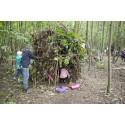 Flera tusen skolelever till Skogens dagar