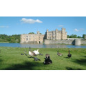 Leeds Castle to launch multimedia tours of their gardens on imagineear's innovative handheld player platform
