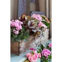 Rosa Blommor från Mäster Grön bidrar till Cancerfondens Rosa Bandetkampanj