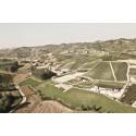 Piemonte øker i salg på Vinmonopolet