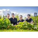 Torsta Gårdsrestaurang nominerad till årets skolrestaurang av White Guide Junior.