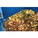 Fallfrukt blir till biogas i Karlskoga