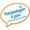 Valstadagen 2012 i svenska fanans färger