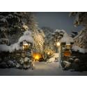 Högtidlig julmarknad på Högberga Gård
